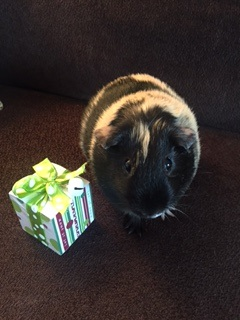 Reese present